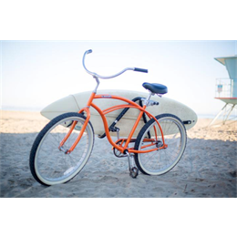 SURFLOUNGE SHORTBOARD RACK BIKE